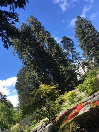 Guide Epicurieuse: Jardin Kofu Jardin japonais Avenue du Stade Nautique