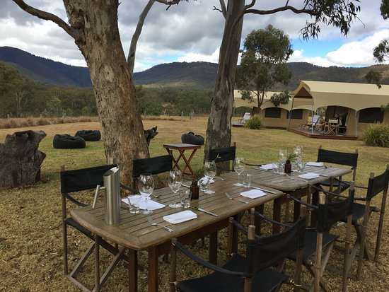 Spicers Canopy : Lunch at Canopy, day 2.