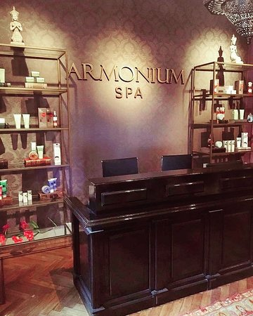 Armonium Spa : Recepción.