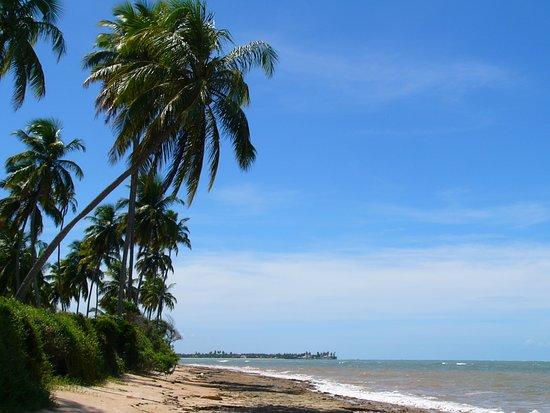 Paripueira Beach: Bella