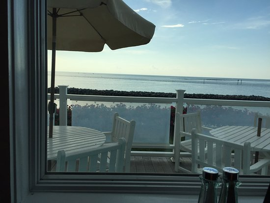 The Oyster Farm Seafood Eatery: Beautiful view