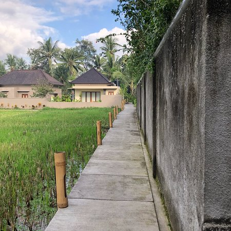 Path to the Gardenia Villa and the front of the Villa front desk