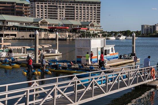Tampa Riverwalk: Rental boats