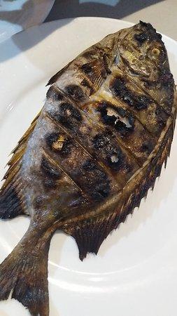 Alona Hidden Dream Resort: the fish