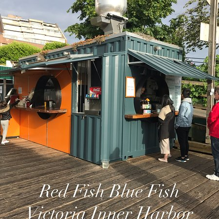 Red Fish Blue Fish : photo1.jpg
