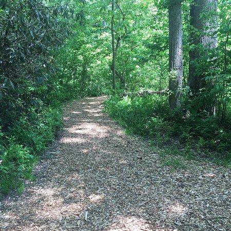 The North Carolina Arboretum Fotografie