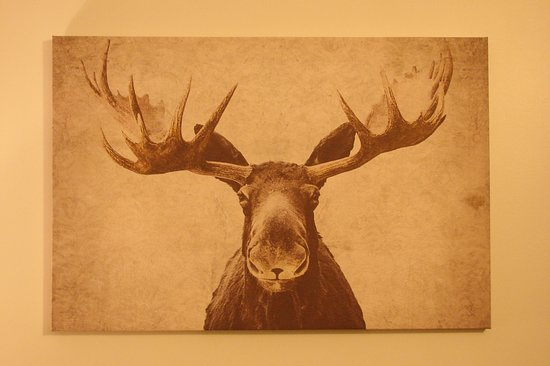 Michigamme, MI: Appropriate art hanging in my room.