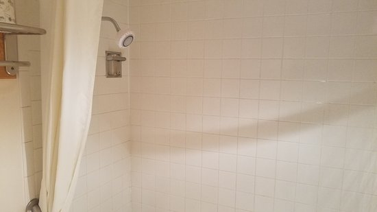 Super 8 by Wyndham Laramie : Shower head is for 5-footers