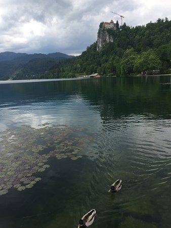 布莱德湖照片