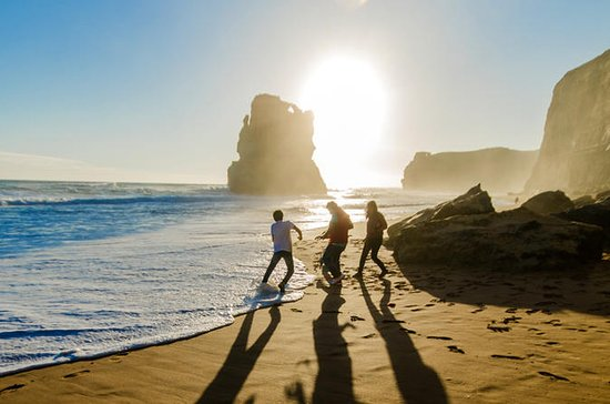 Boutique 12 Apostles Great Ocean Road Walk with Gourmet Lunch a...