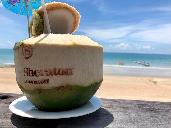 บลูมังกี้บาร์: Coconut by the beach