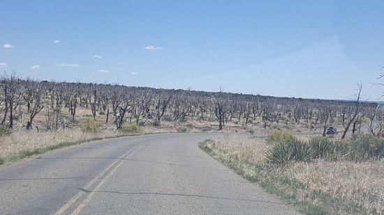 Mesa Verde Colorado: 20180508_131755_large.jpg