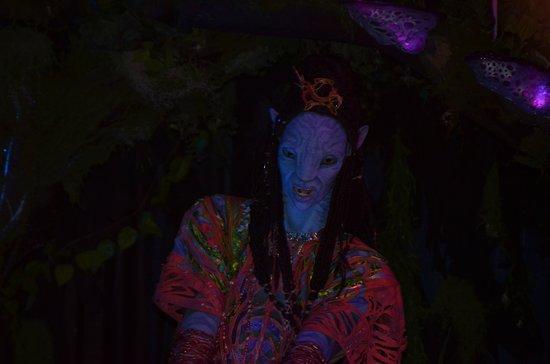 ดิสนียส์ แอนิมอล คิงดอม: Avatar shaman