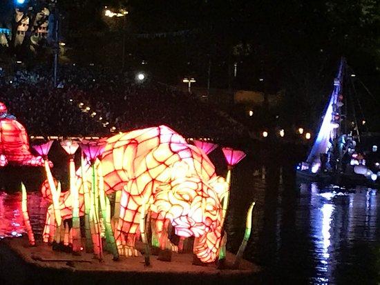 Disney's Animal Kingdom: River show