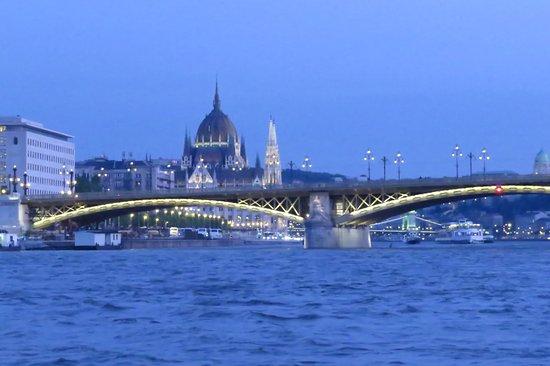 Danube River: puente desde el río