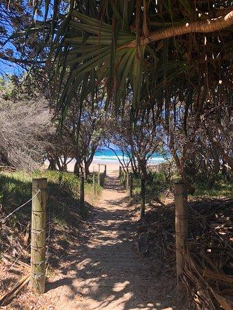 Zdjęcie Cabarita Beach
