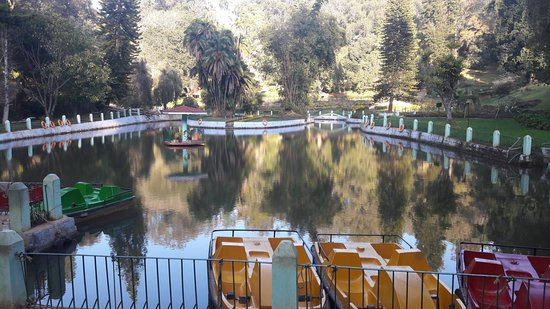 Sim`s Park: a lake in the park