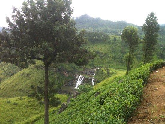 Prebu Lanka Tours照片