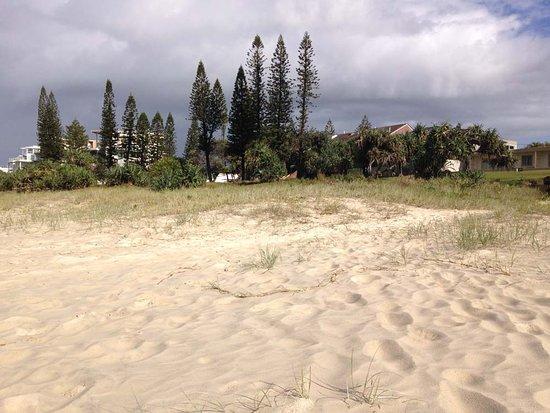 Tugun Beach: Some surroundings near Tugan Beach