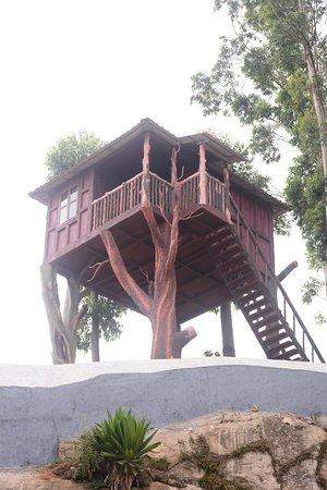 Joys Resorts Photo