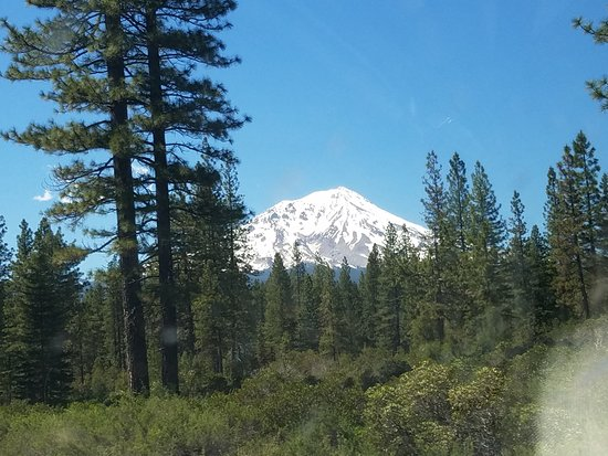 McCloud Outdoors: Hope that volcano doesnt go off!