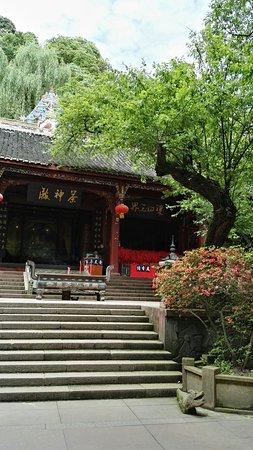 Mingshan County, Çin: IMG_20180511_145052_large.jpg