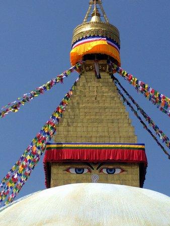 Access Nepal Tour & Trekking : Tour of Katmandu