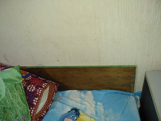 Beas, India: Nippy guest house bed