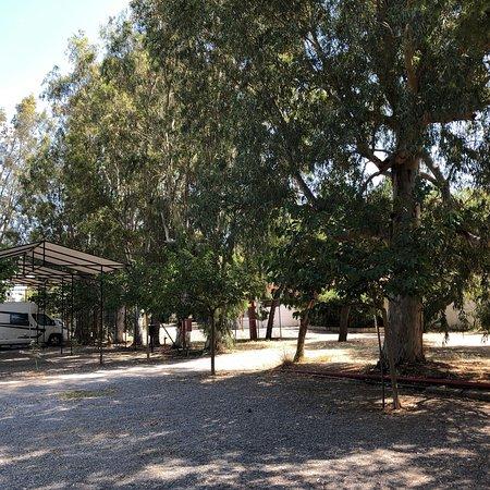 Camping Zaritsi Photo