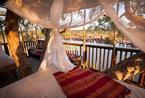 Timbavati Private Nature Reserve, South Africa: Umlani tree house view