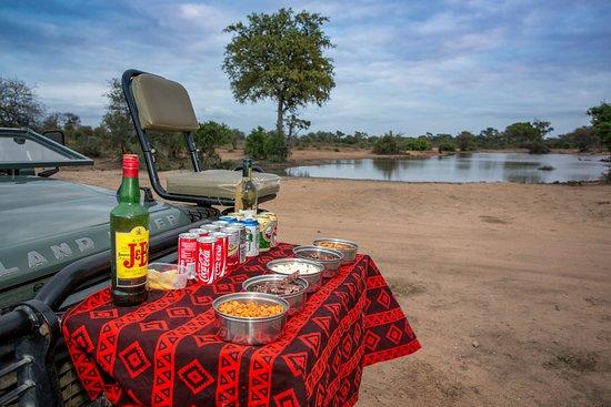 Timbavati Private Nature Reserve, South Africa: Umlani Sun downer stop