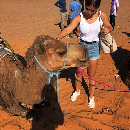 Viajesmarrakech - Day Tours照片
