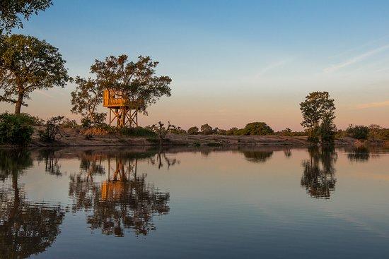 Timbavati Private Nature Reserve, South Africa: Umlani tree house
