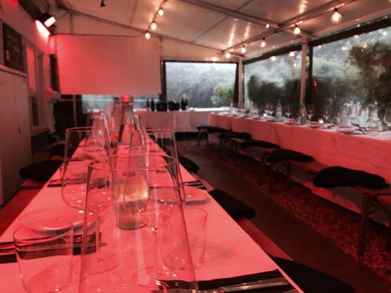 Elbe 76: Events/Veranstaltungen