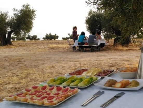 Arcicollar, Spain: Menú desgustación. Tasting menu with local products at the olive grove