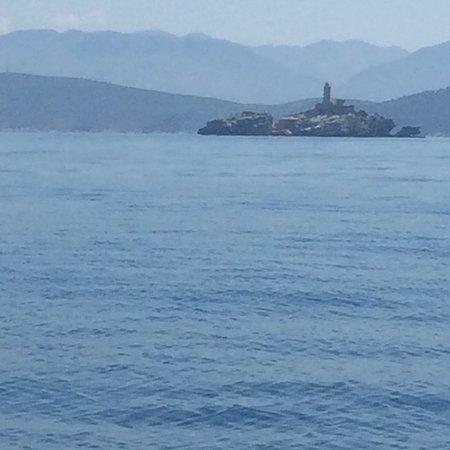 Deep Blue Boats foto