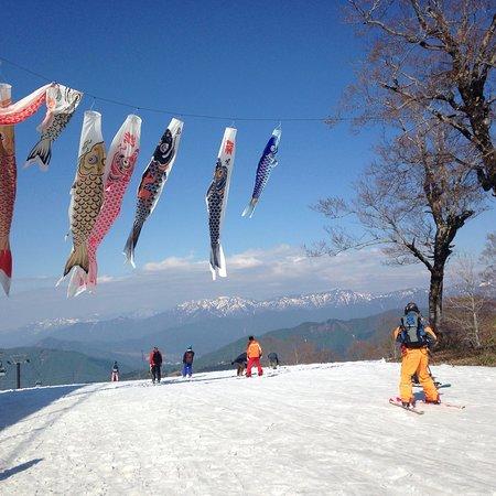 Kagura Ski Resort: photo1.jpg