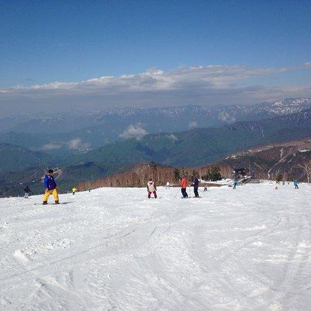 Kagura Ski Resort: photo2.jpg