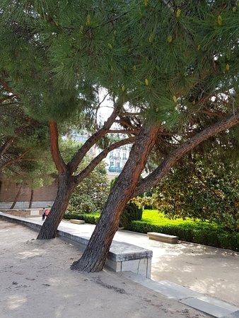 Jardines de Sabatini: Beautiful gardens