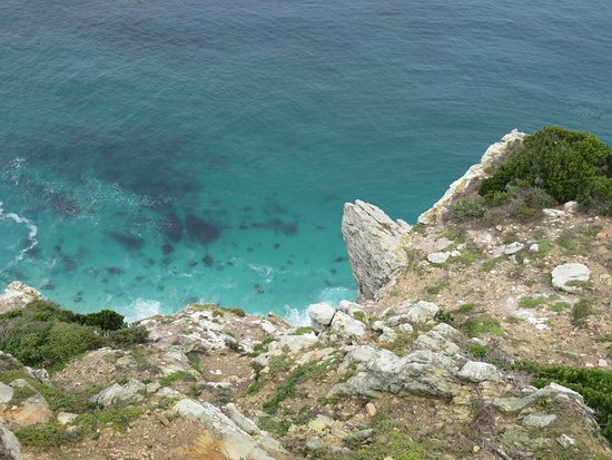 Cape Point Nature Reserve: View