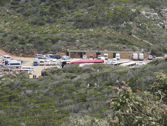 Cape Point Nature Reserve: Cape Point car park
