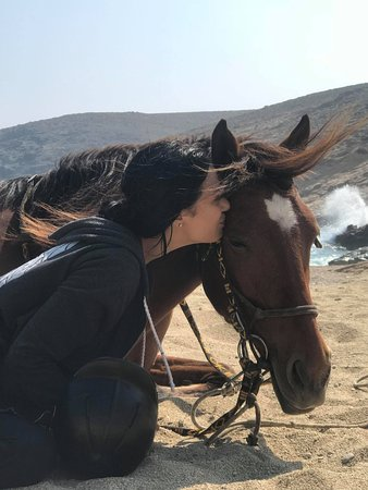 Mykonos Horseland - 2019 All You Need to Know BEFORE You Go