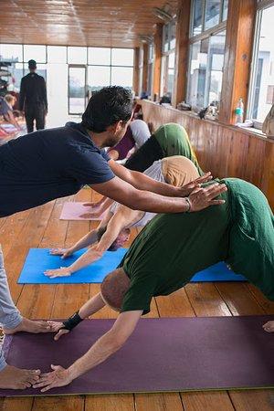 Trainers at Rishikul Yogshala assisting student with Downward Dog pose.