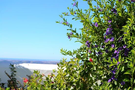 Landscape - Picture of La Vista de Medina, Medina-Sidonia - Tripadvisor