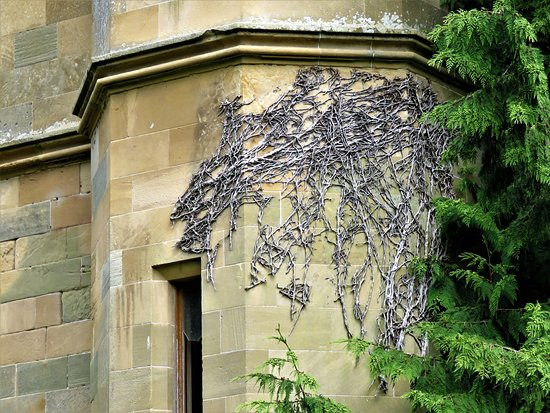 Crawford Priory: ivy tracery