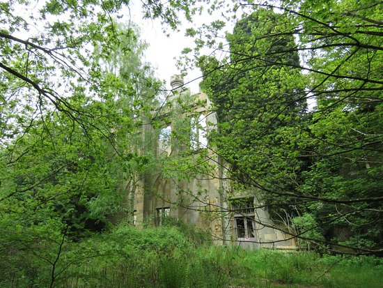 Crawford Priory: well overgrown