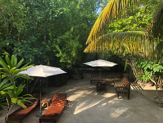 Huracan Diving Lodge: Main hallway and breakfast area