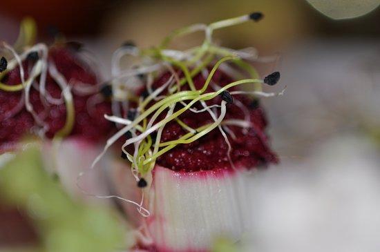 Ana'chronique: Mousse de betterave crue & poireau