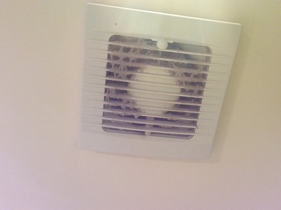 Akaroa Village Inn: Disgusting build up of dust on bathroom fan , health and safety risk perhaps !