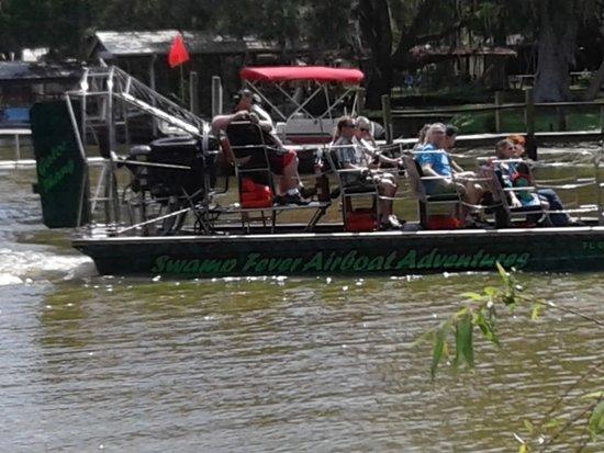 Lake Panasoffkee, FL: GATOR THANG coming back from the Swamp.